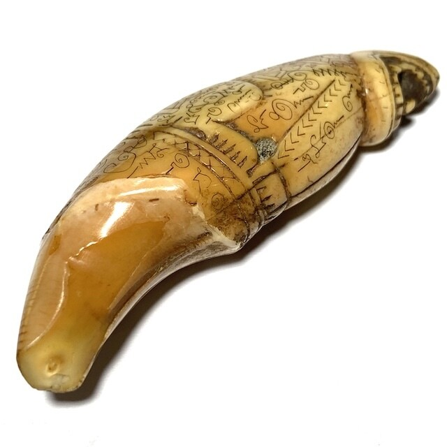 Khiaw Hmee Gae Suea Maha Amnaj Dtem Suudt Carved Bear Tooth with Tiger Hand Spell Inscriptions 3 Inches Luang Por Nok FREE Express shipping