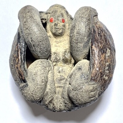 Kot Kala Jarn Yant Hua Jai Na Ok Dtaek Fang Mae Bper Early Era Coconut Anomaly with Hoeng Prai Deva Gemstone Eyes Hand Inscriptions Luang Por Pina Free EMS