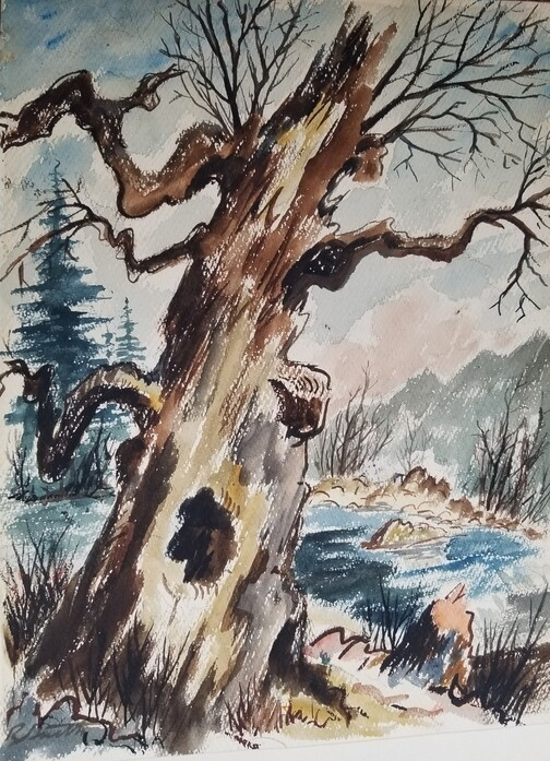 Lost River Chestnut