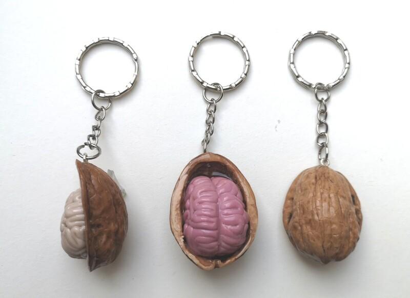 Hjerner i en nøddeskal