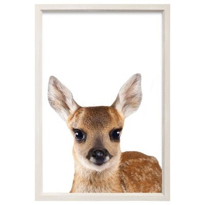 Baby Animal Framed Art