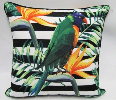 Parrot Cushions