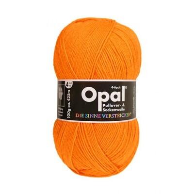 solids оранжевый неон 2013