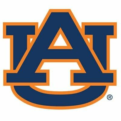 2010 Auburn