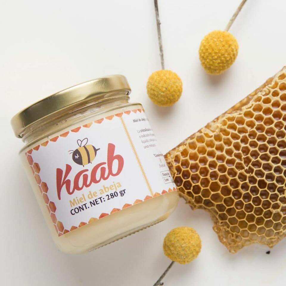 Miel de abeja Multiflora (Flores de la península Yucatán)