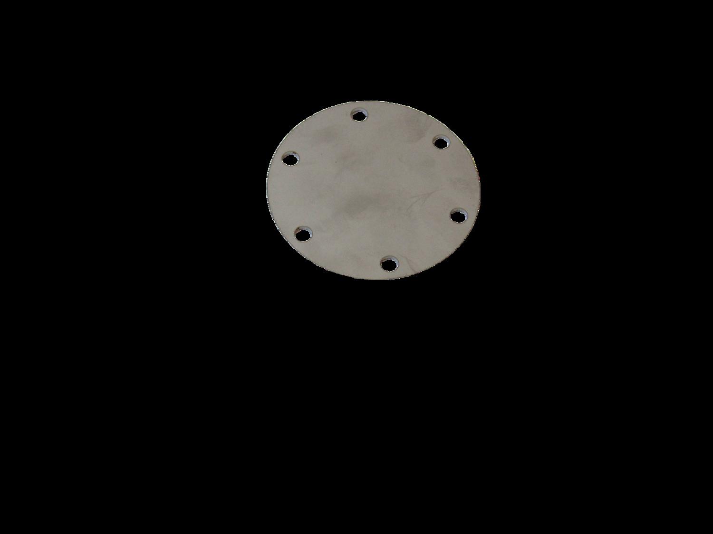 6-Hole Blank SS Plate
