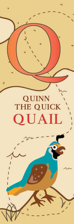 Quinn The Quick Quail From Qatar Bookmark