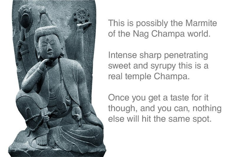 Absolute Temple Nag Champa Incense 12 Sticks