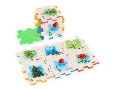 РАСТЕНИЯ (1 кубик)