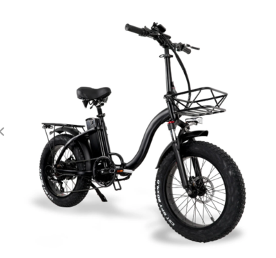 Vélo électrique Fatbike tout terrain CURVEO 500W