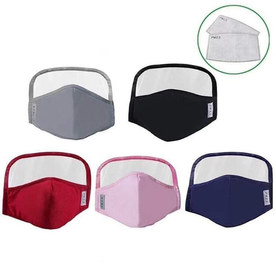 Face Shield Mask w/ N95 filter