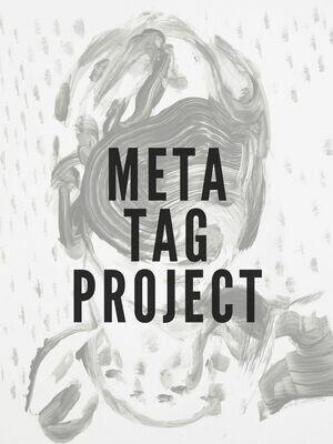 Meta Tag Project