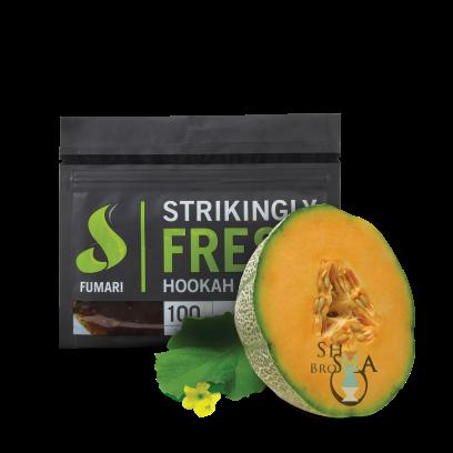 FUMARI Premium Shisha Tobacco - 100g