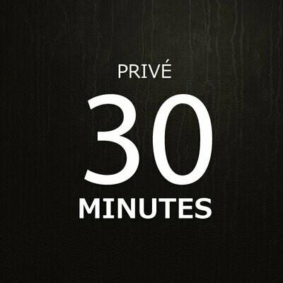 30 minutes de support téléphoniques * - 30 minuten telefonische ondersteuning-  30 minutes Phone support  *