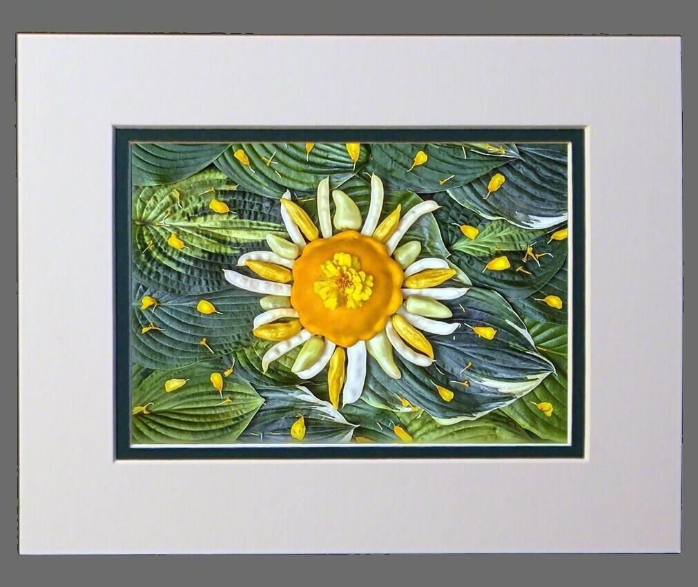 Sol Hot Gogh  8x10