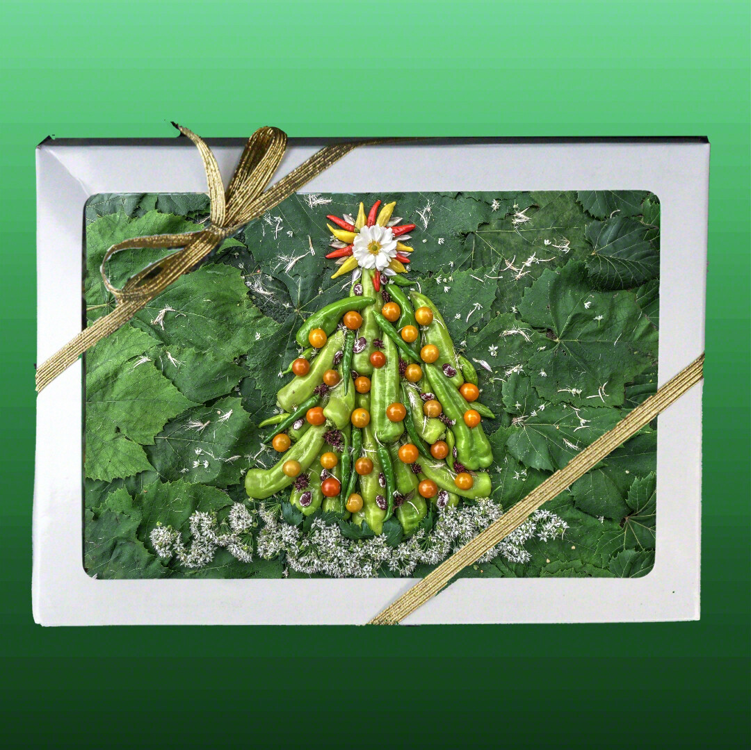 Greeting Cards: Holiday Star with Pepper Tree ​