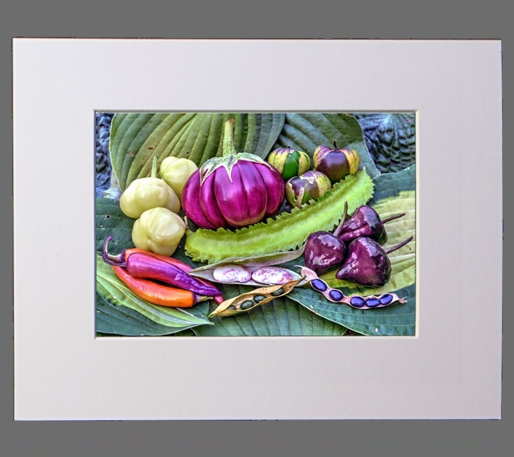 Still Life with Ribbed Eggplant