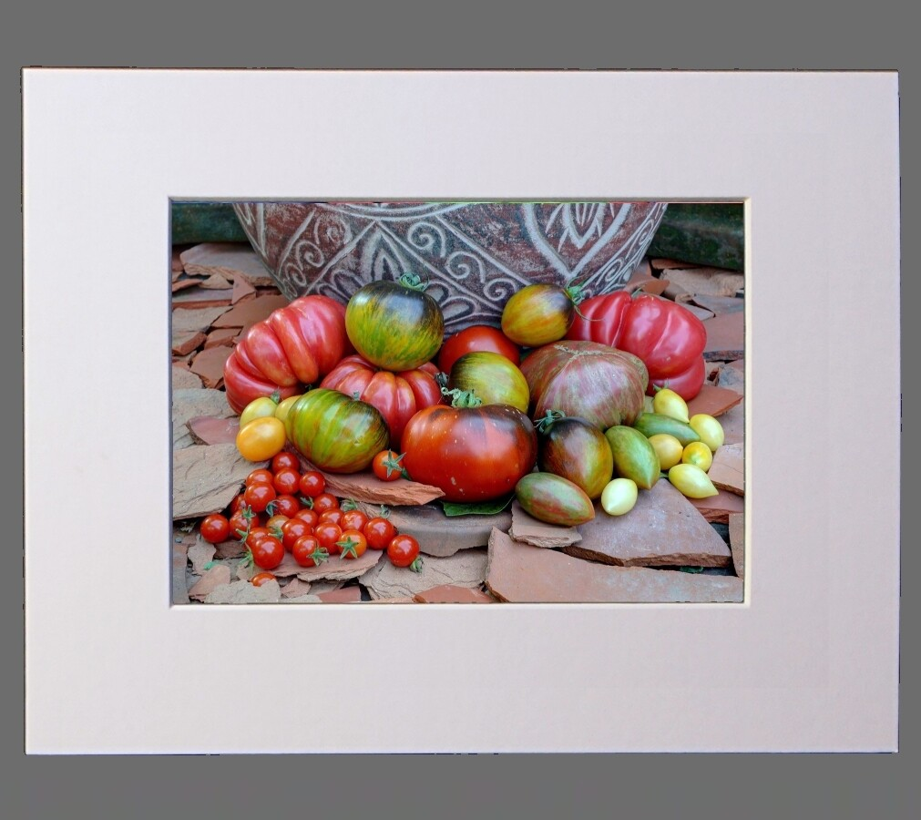 Still Life of Tomatoes on Terracotta 8