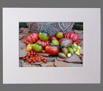 Still Life of Tomatoes on Terracotta 8