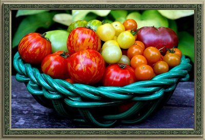 Homage to Homegrown Tomatoes