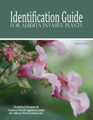 Invasive Plants Of Alberta ID Guide