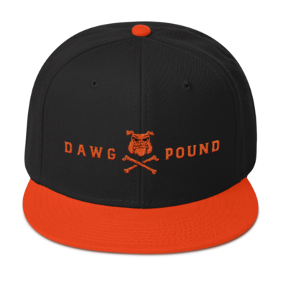THE LAND-Dawg Pound Snapback