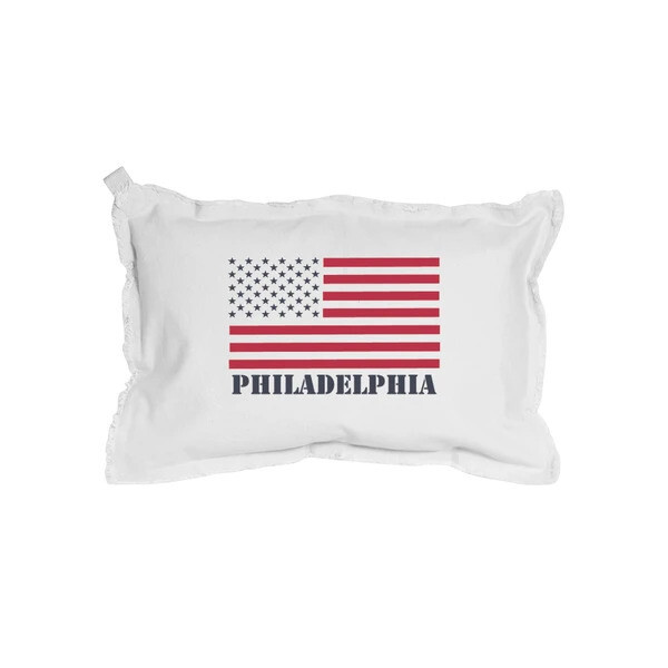American Flag Hand Painted Pillows