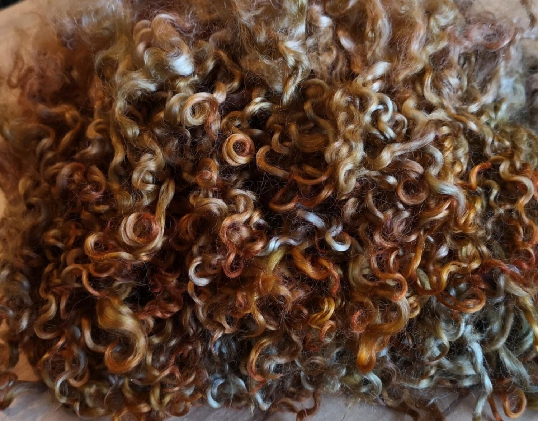 Wensleydale Locken 20Gr. kupfer-braunetöne, W4
