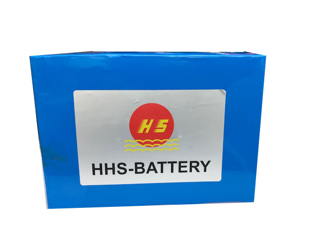 Baterías HHS Litio de 48/60/72 vol / CaribeExpress Con 3 Meses de Garantia
