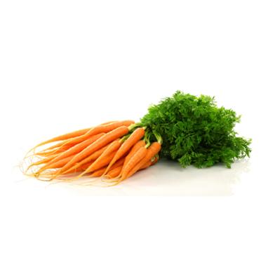 Jonge wortel