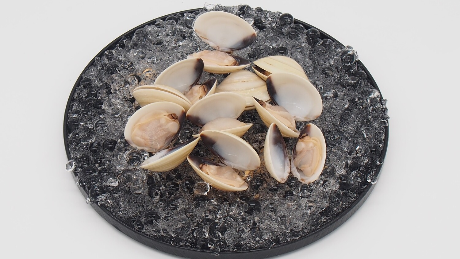 Pan Royal White Clam with Shell