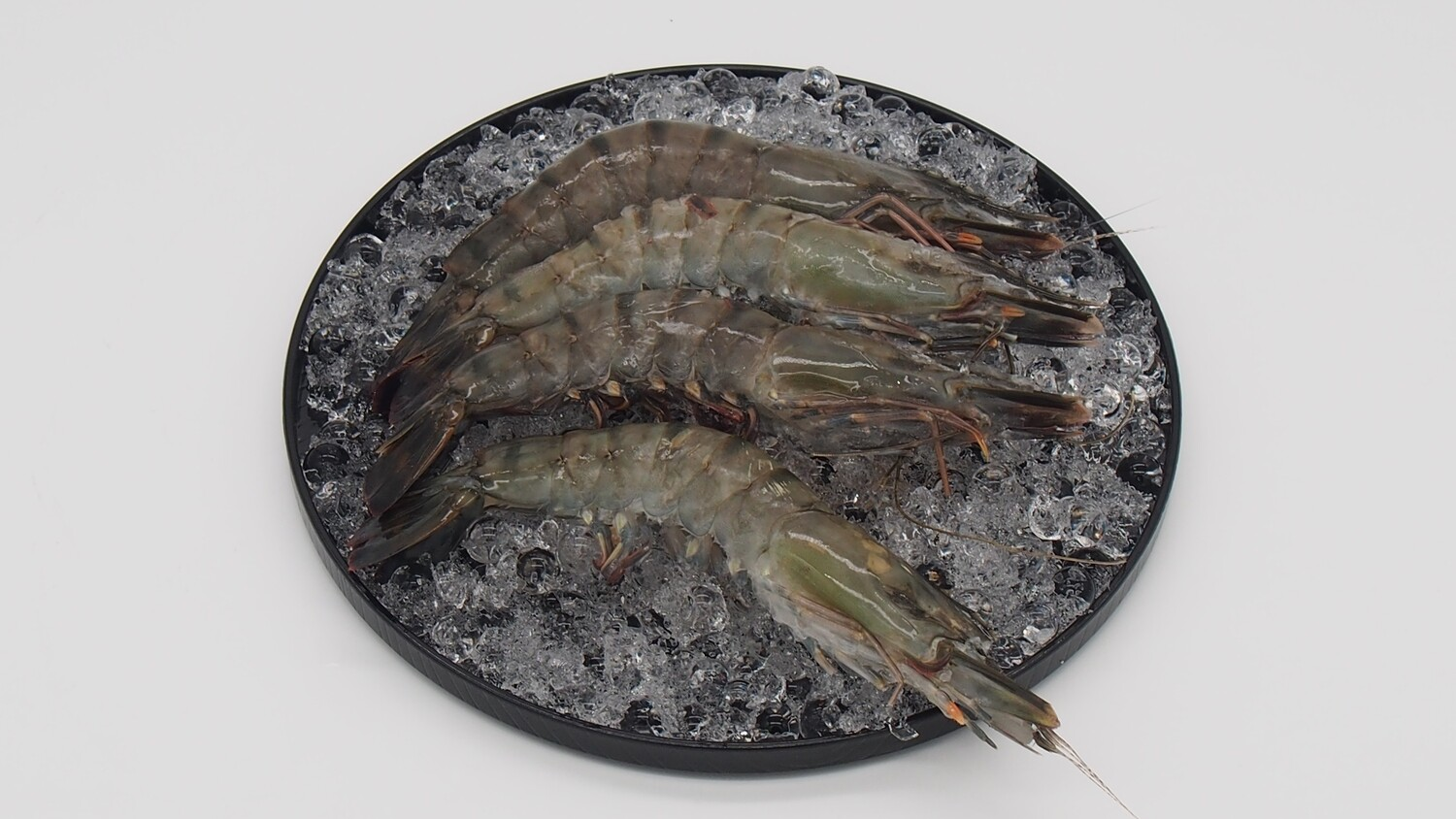 Pan Royal Black Tiger Prawns