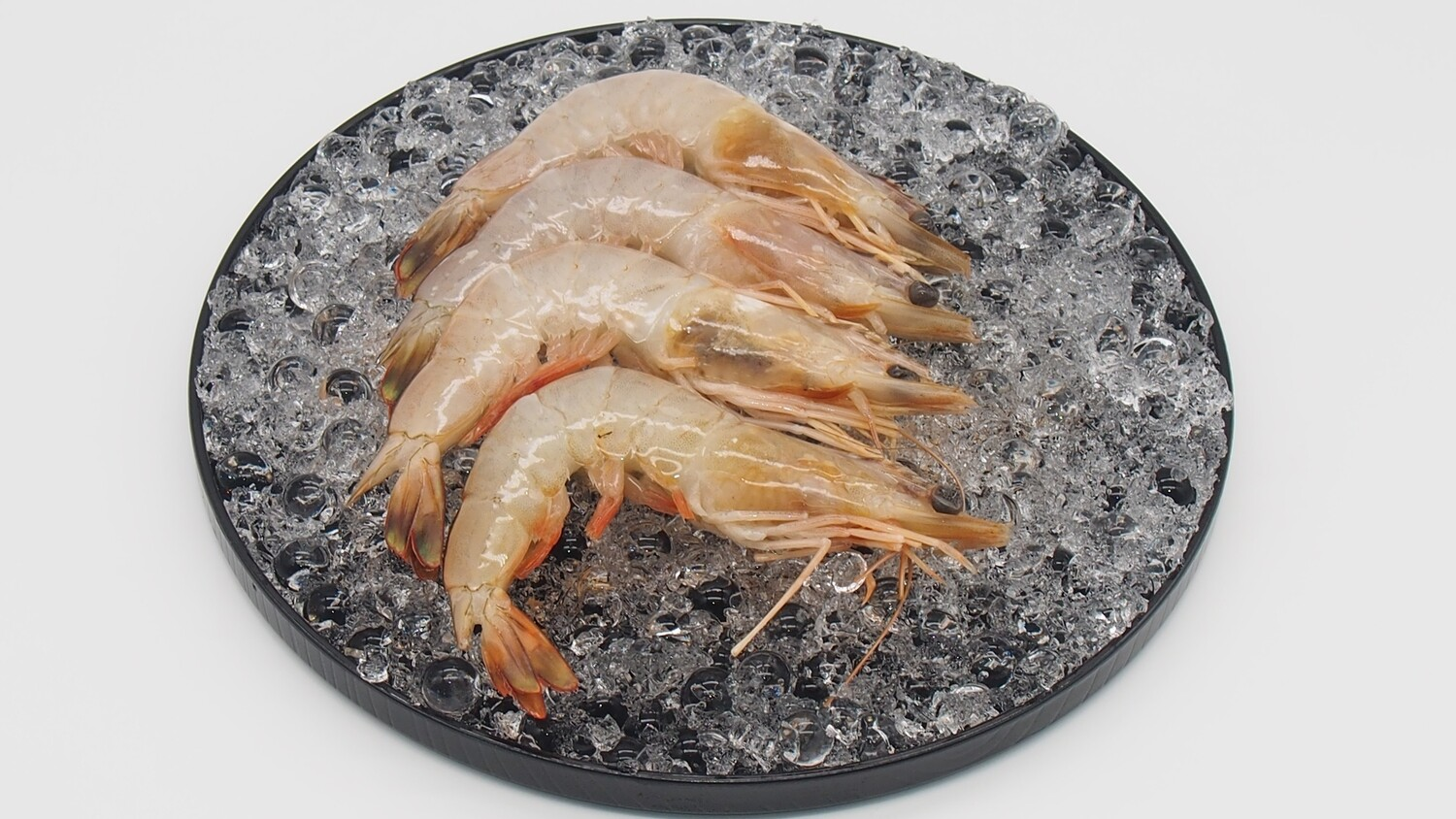 Pan Royal Ang Ka / Red Leg Prawn