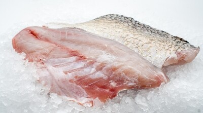 Pan Royal Frozen Seabass Fillet with Skin