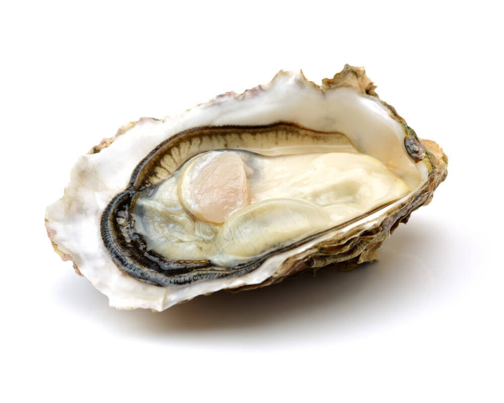 Pan Royal Frozen Half Shell Oyster (MUST COOK BEFORE CONSUMPTION)