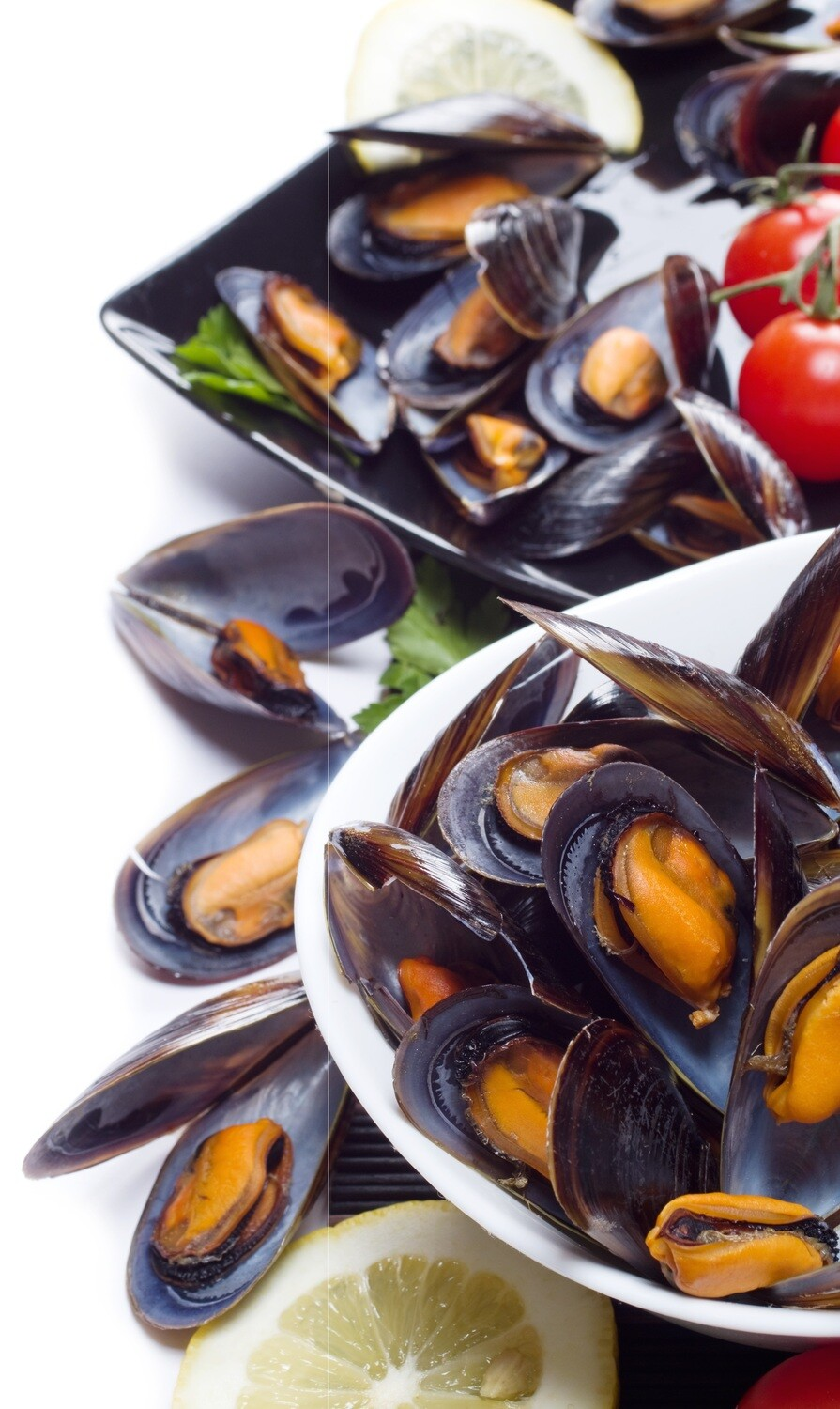 Pan Royal Frozen Half Shell Blue Mussel