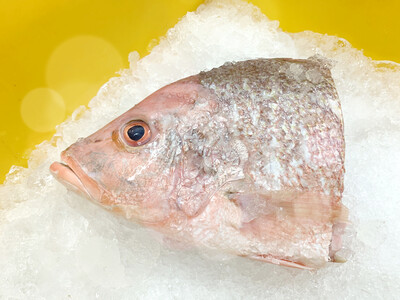 Pan Royal Frozen Red Snapper Fish Head