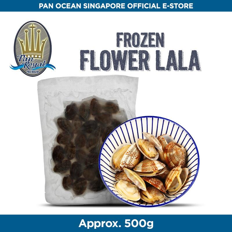 Pan Royal Flower Clam (Full Shell)