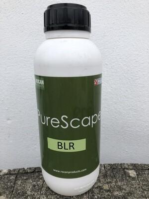 Purescape Black Limestone Reviver