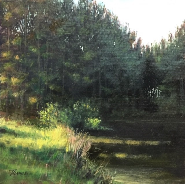 PINE SHADOWS - SOLD