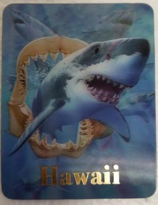 Magnet - Sharks & Jawbone 3D