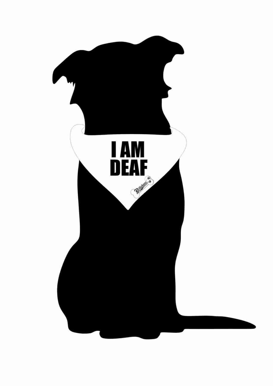 Billabone - I am deaf Bandana