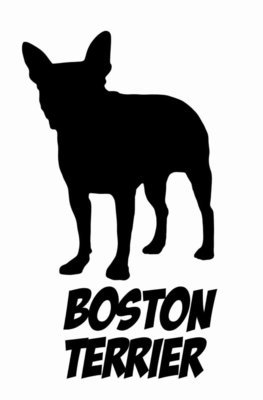 Billabone Boston Terrier Sticker