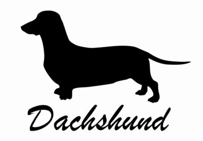 Billabone Dachshund Sticker