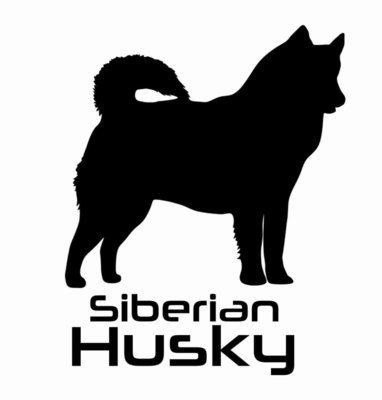 Billabone Siberian Husky Sticker