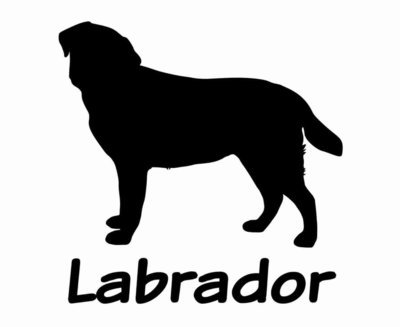 Billabone Labrador Sticker