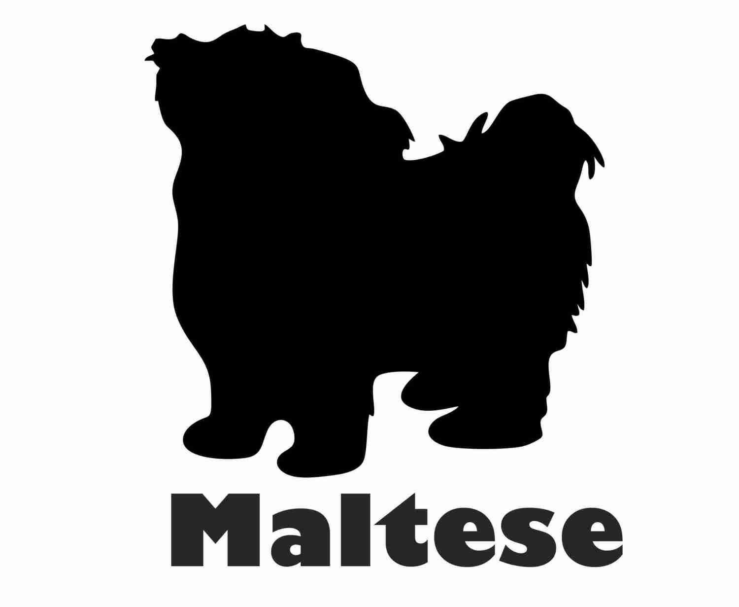 Billabone Maltese Sticker
