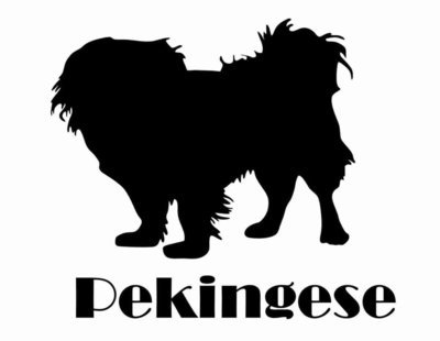 Billabone Pekingese Sticker
