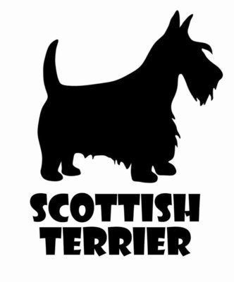 Billabone Scottish Terrier Sticker