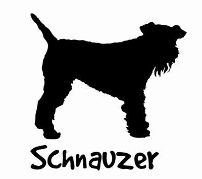Billabone Schnauzer Sticker